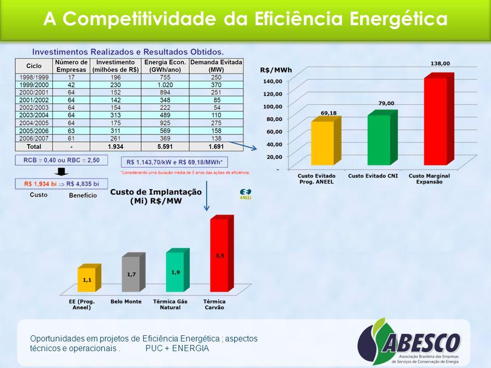 A Competitividade da Eficiência Energética