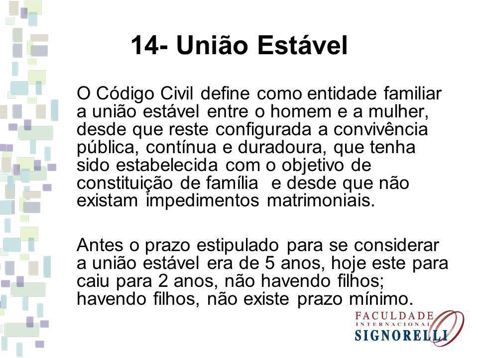 14- União Estável