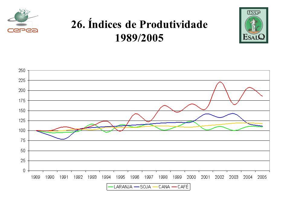 26. Índices de Produtividade 1989/2005
