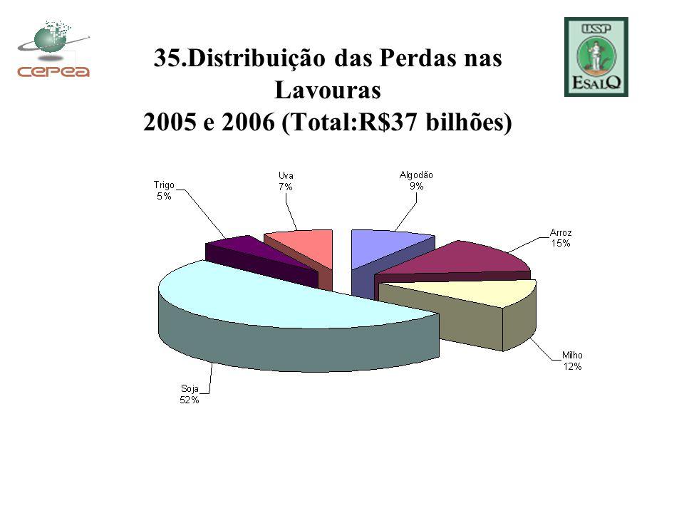35.Distribuição das Perdas nas Lavouras 2005 e 2006 (Total:R$37 bilhões)