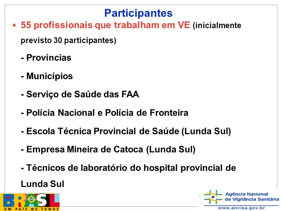 Participantes 55 profissionais que trabalham em VE (inicialmente previsto 30 participantes) - Províncias.