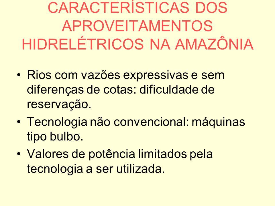 CARACTERÍSTICAS DOS APROVEITAMENTOS HIDRELÉTRICOS NA AMAZÔNIA