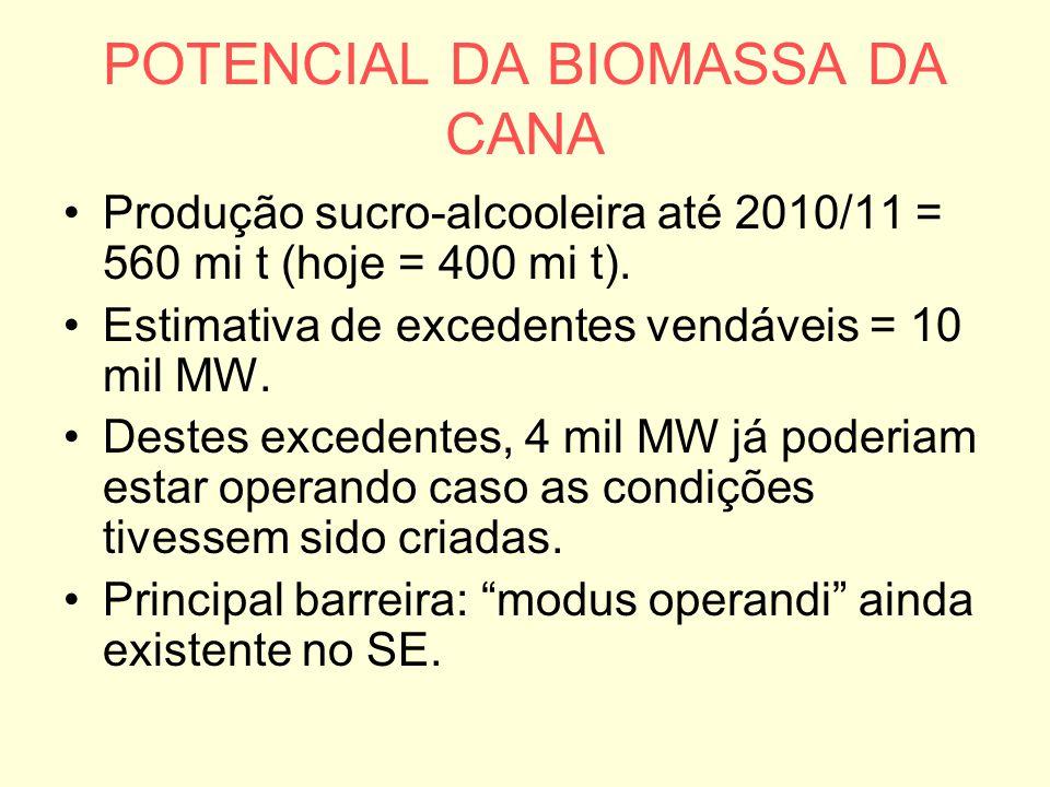 POTENCIAL DA BIOMASSA DA CANA