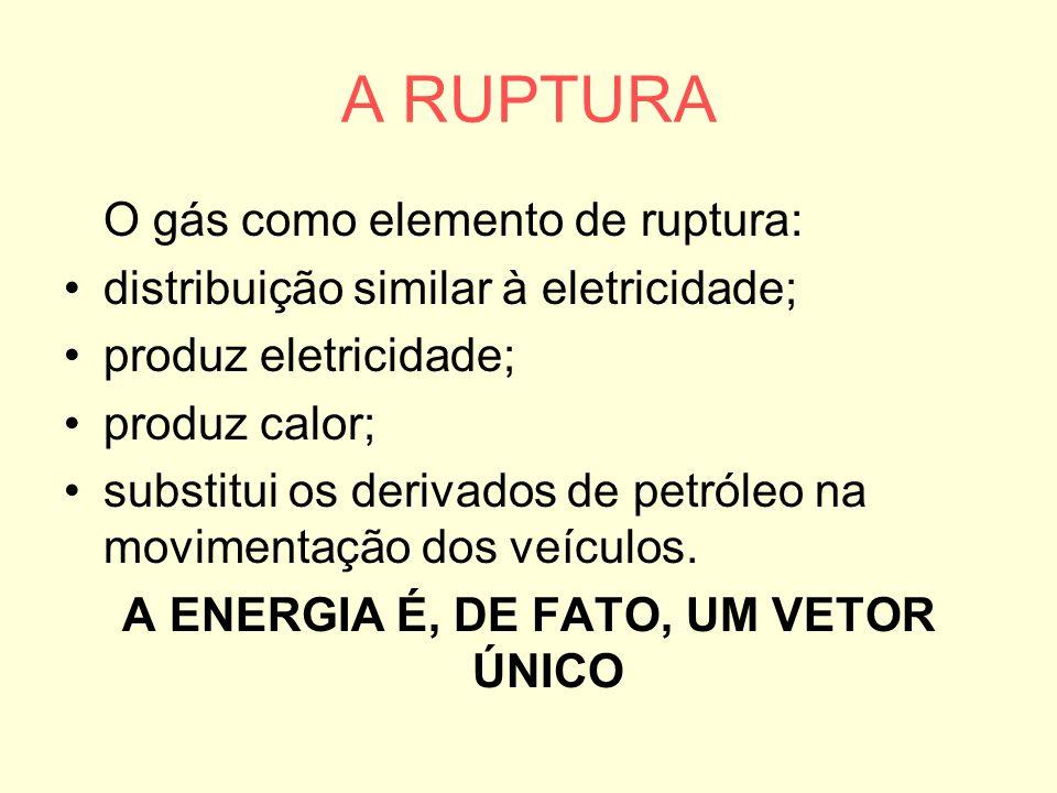 A ENERGIA É, DE FATO, UM VETOR ÚNICO