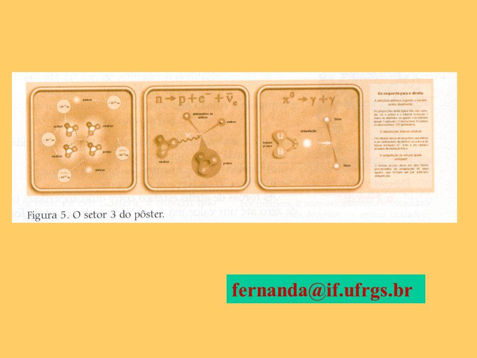 fernanda@if.ufrgs.br