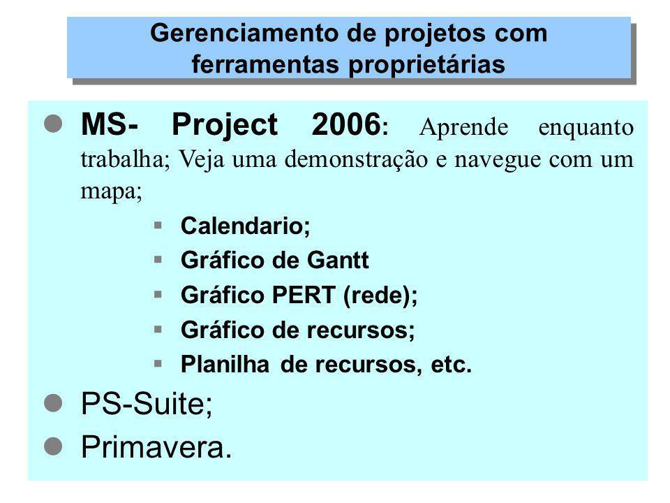 Gerenciamento de projetos com ferramentas proprietárias