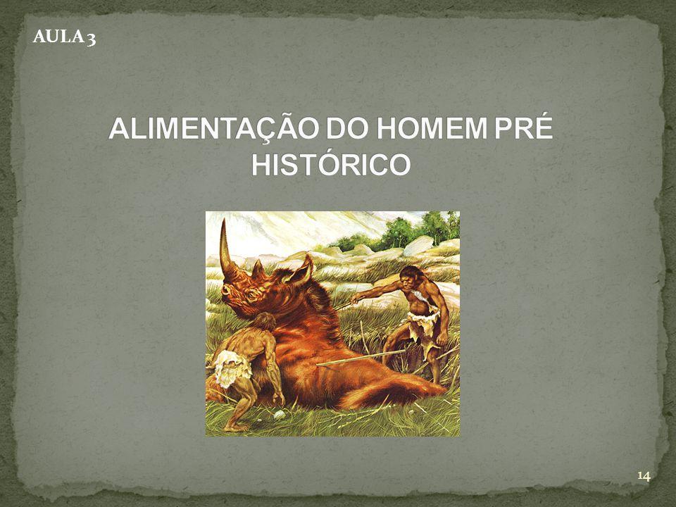 ALIMENTAÇÃO DO HOMEM PRÉ HISTÓRICO