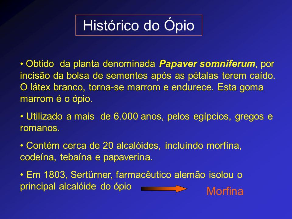 Histórico do Ópio Morfina