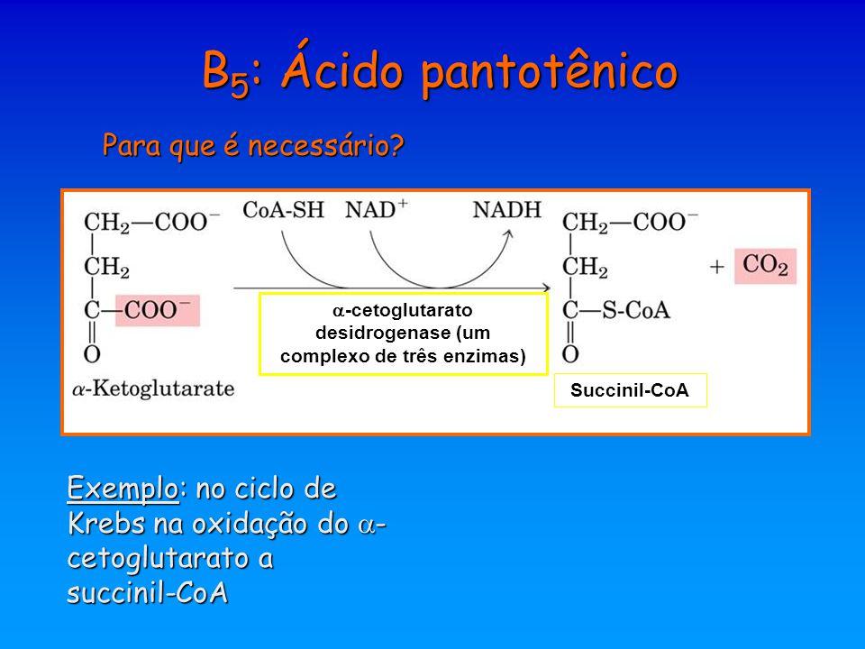 -cetoglutarato desidrogenase (um complexo de três enzimas)