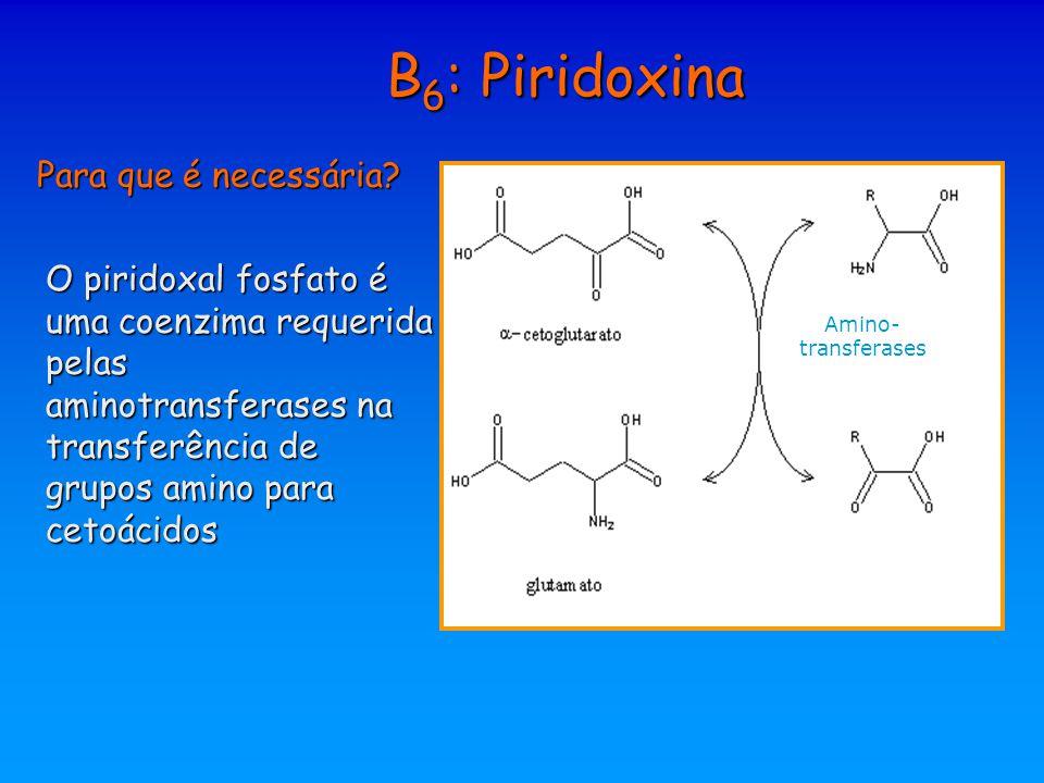 B6: Piridoxina Para que é necessária