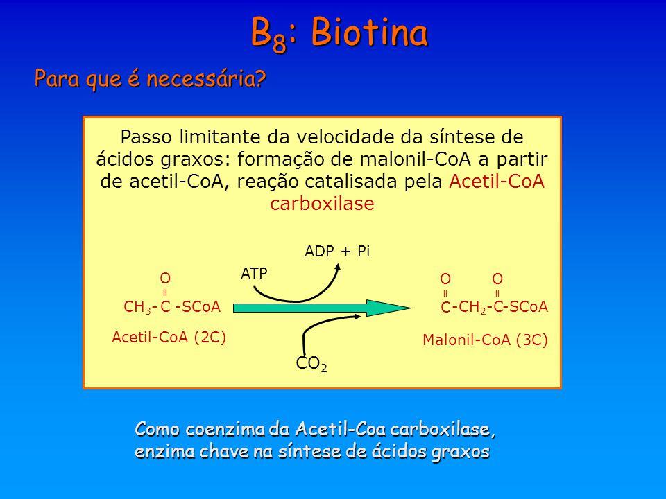 B8: Biotina Para que é necessária