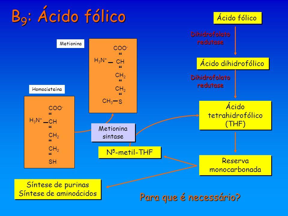 B9: Ácido fólico Para que é necessário Ácido fólico
