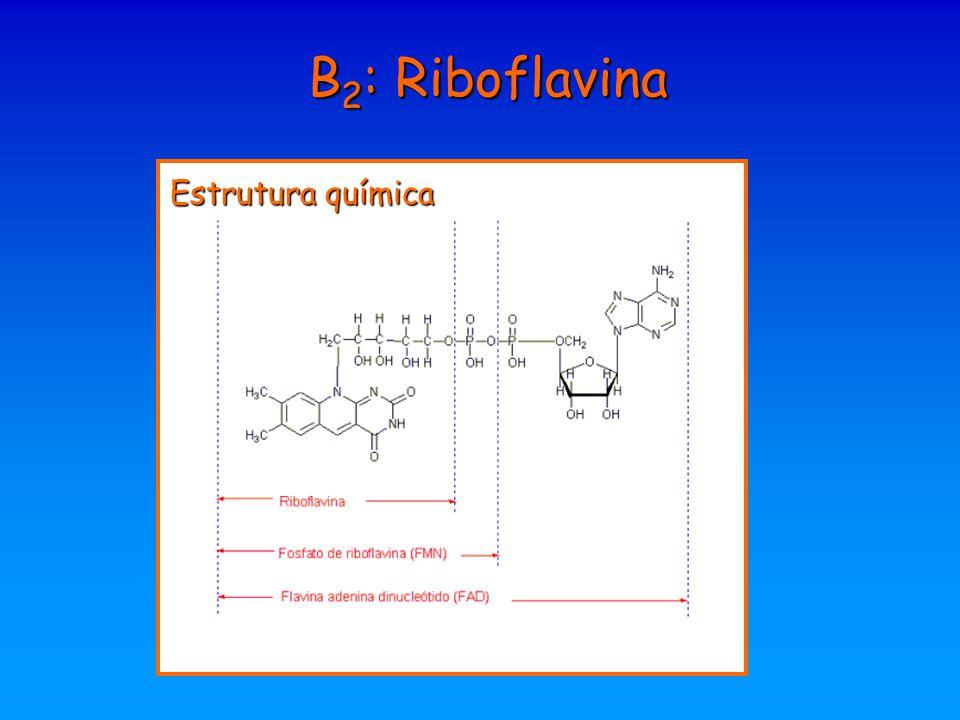 B2: Riboflavina Estrutura química