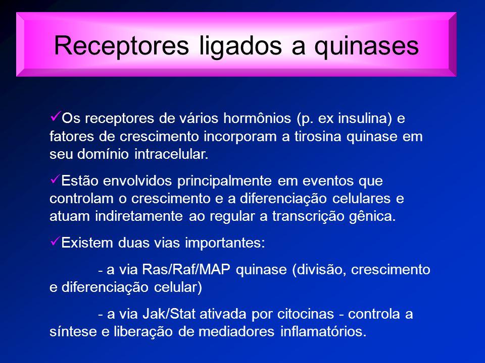 Receptores ligados a quinases