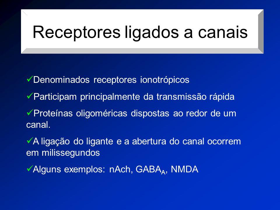 Receptores ligados a canais