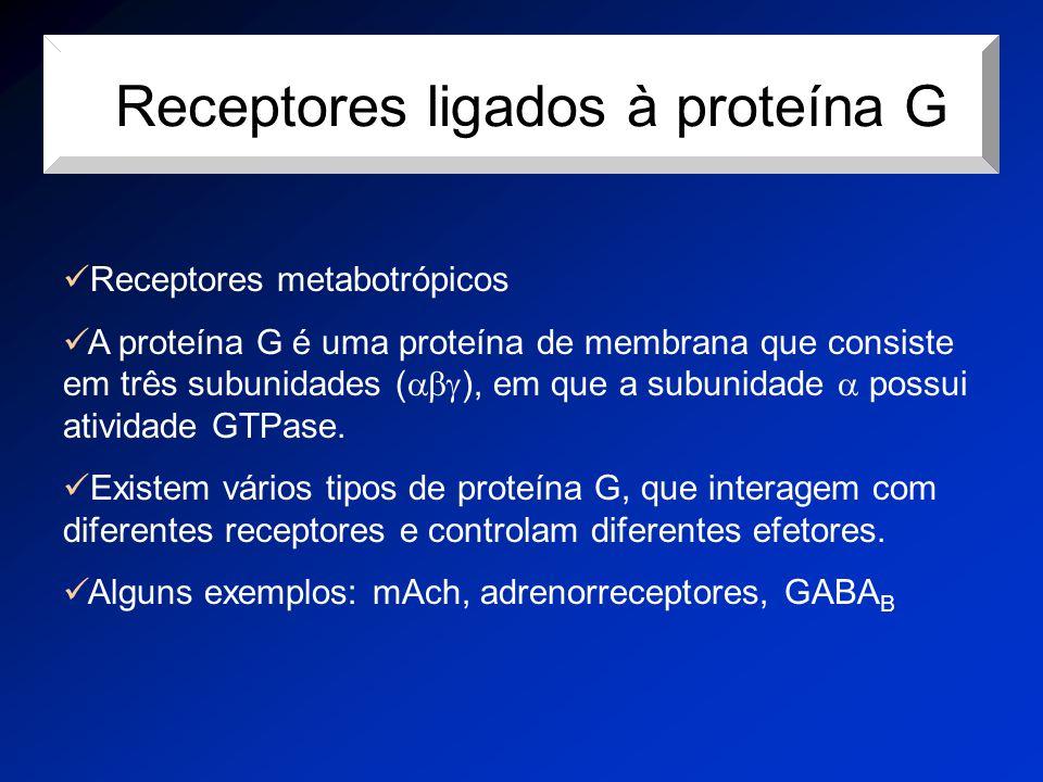 rReceptores ligados à proteína G