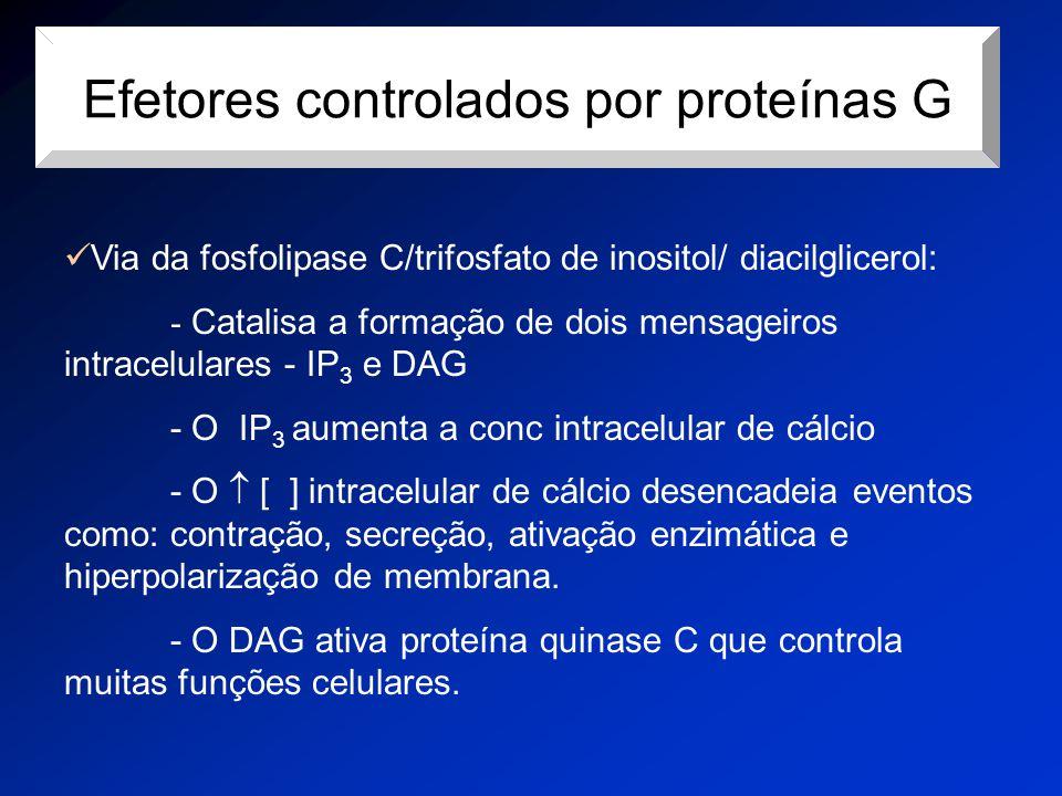 Efetores controlados por proteínas G
