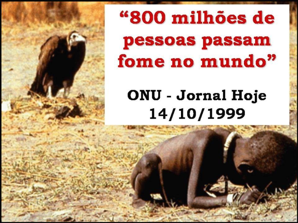 800 milhões de pessoas Passam fome no mundo ONU – Jornal Hoje 14/10/1.999