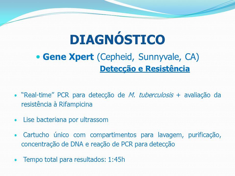 Gene Xpert (Cepheid, Sunnyvale, CA)