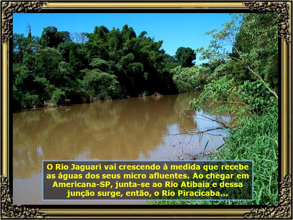 P0014947 - NASCENTE DO RIO PIRACICABA - RIO JAGUARI-680.