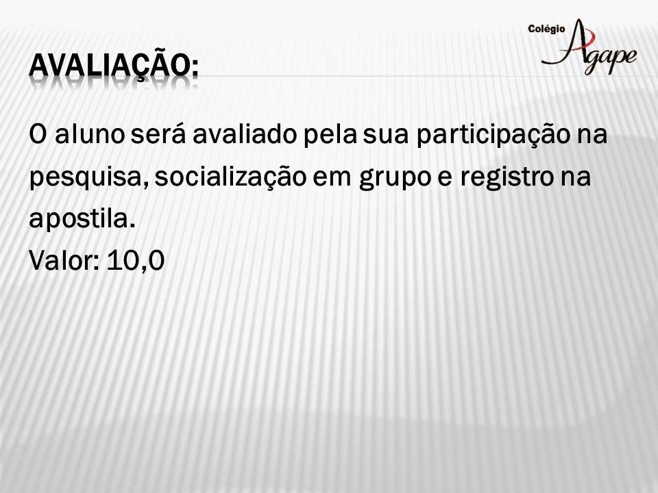 Avaliação: O aluno será avaliado pela sua participação na pesquisa, socialização em grupo e registro na apostila.
