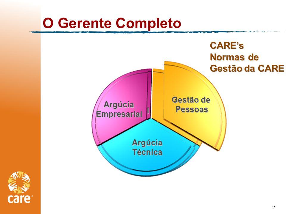 O Gerente Completo CARE's Normas de Gestão da CARE Argúcia Técnica