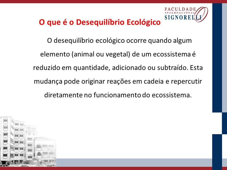 O que é o Desequilíbrio Ecológico