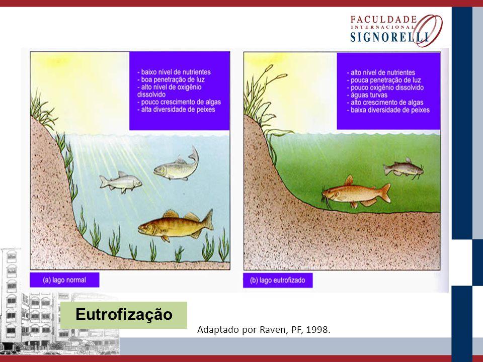 Eutrofização Adaptado por Raven, PF, 1998.