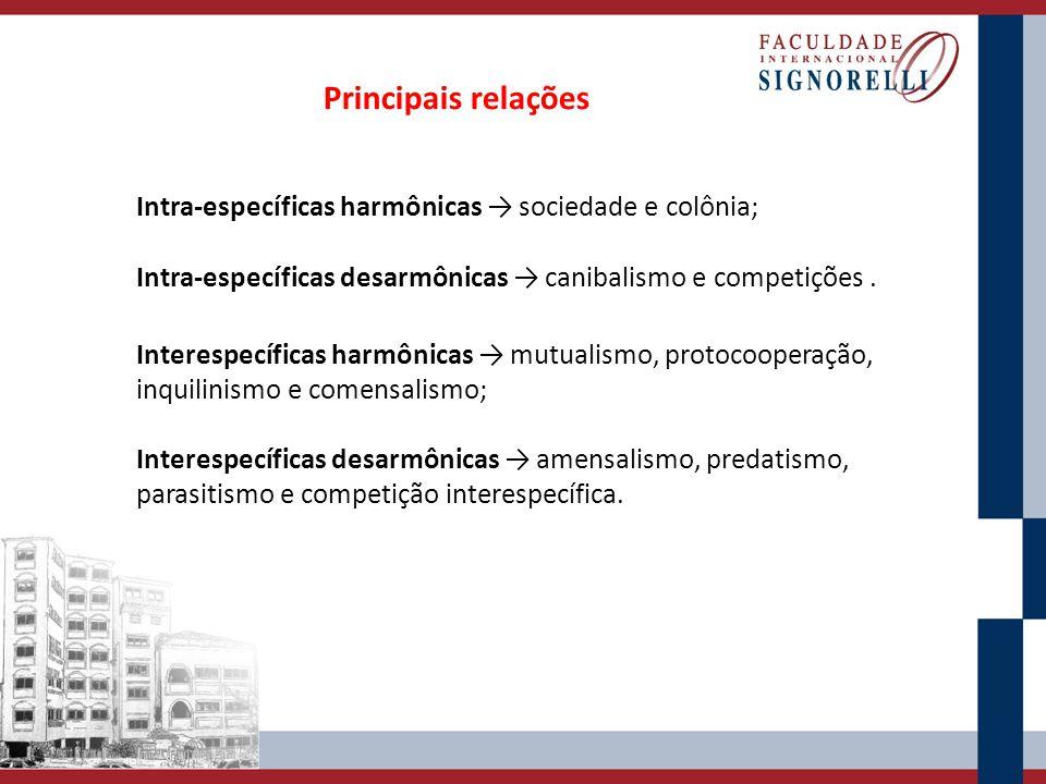 Principais relações Intra-específicas harmônicas → sociedade e colônia; Intra-específicas desarmônicas → canibalismo e competições .