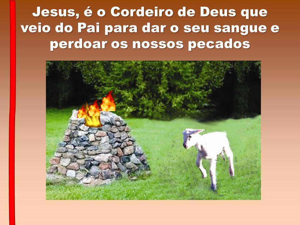 Jesus, é o Cordeiro de Deus que veio do Pai para dar o seu sangue e perdoar os nossos pecados