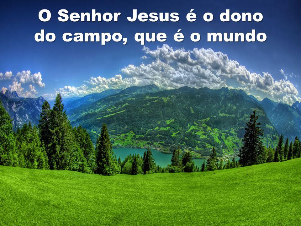 O Senhor Jesus é o dono do campo, que é o mundo