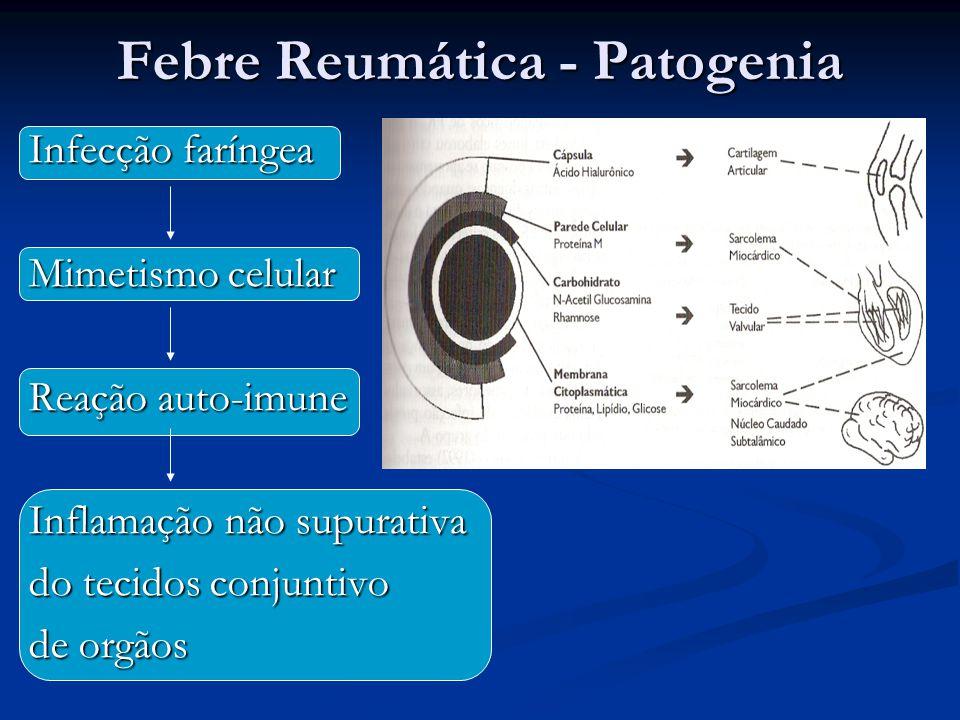 Febre Reumática - Patogenia