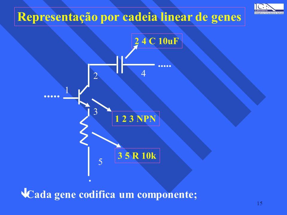 Representação por cadeia linear de genes