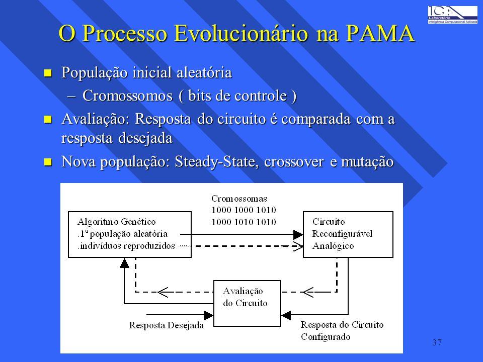O Processo Evolucionário na PAMA