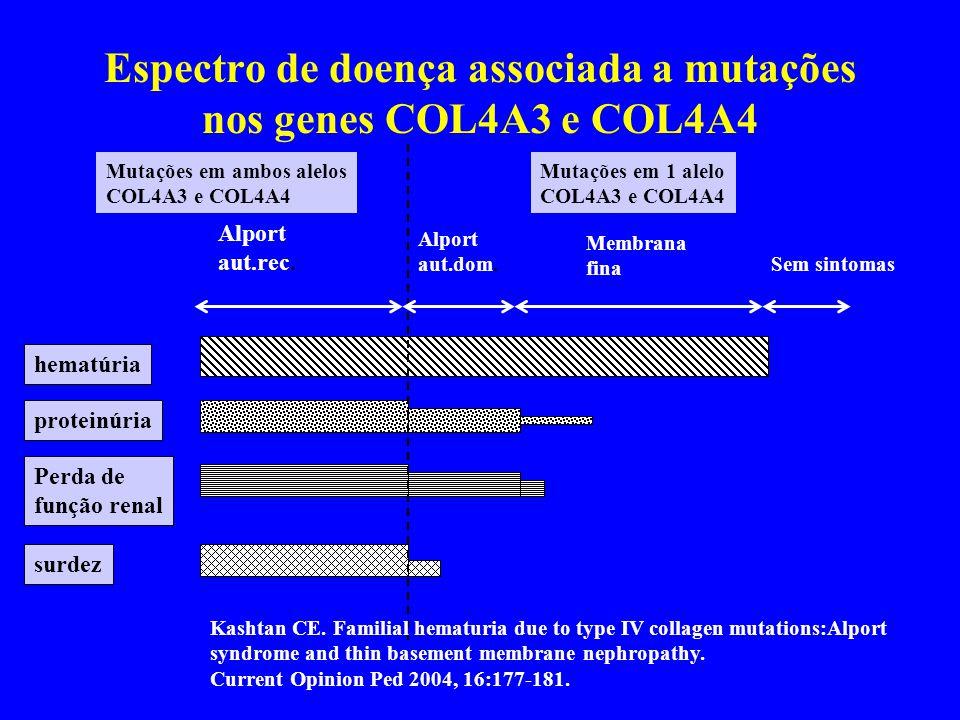 Espectro de doença associada a mutações nos genes COL4A3 e COL4A4