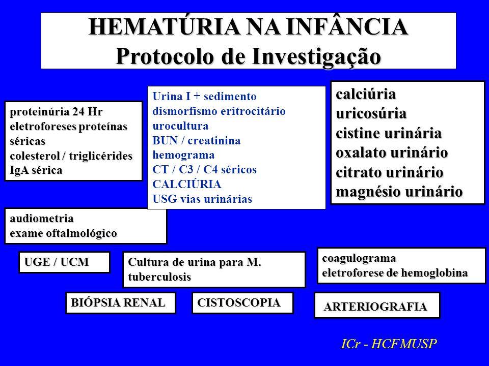 HEMATÚRIA NA INFÂNCIA Protocolo de Investigação