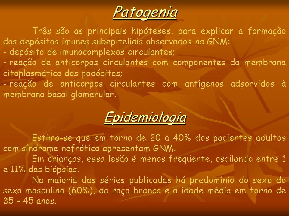 Patogenia Epidemiologia