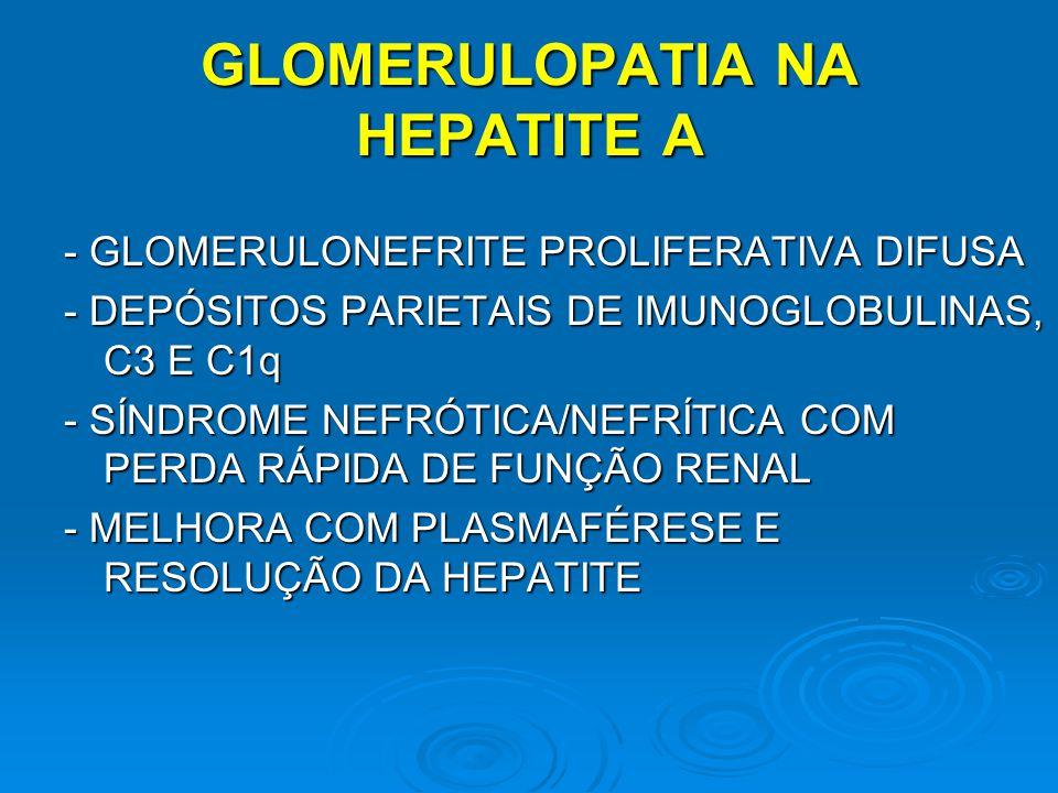 GLOMERULOPATIA NA HEPATITE A