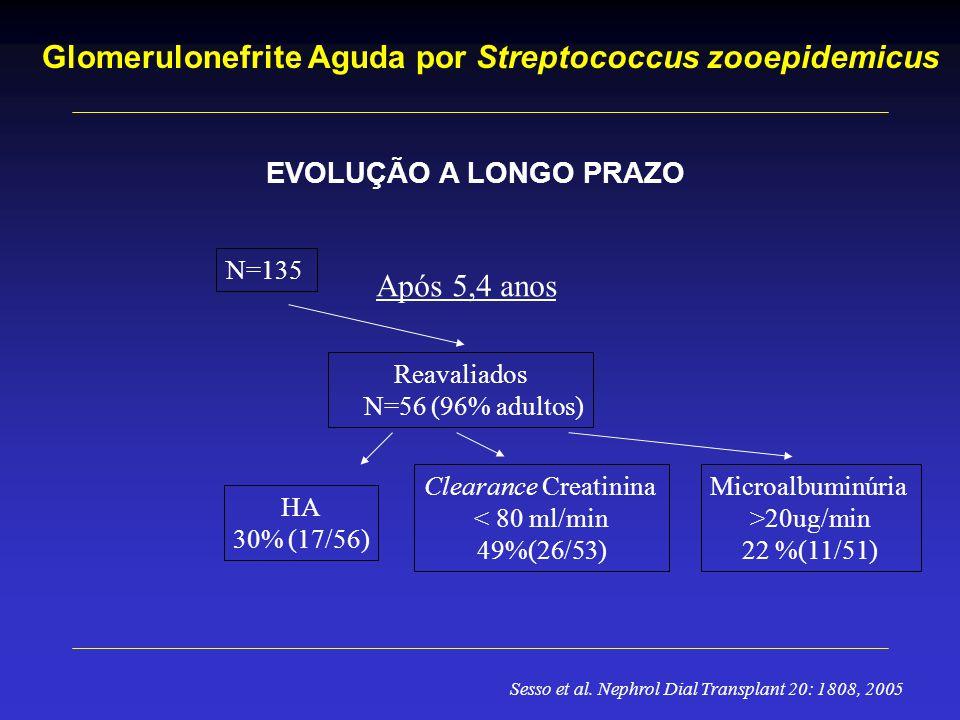 Glomerulonefrite Aguda por Streptococcus zooepidemicus