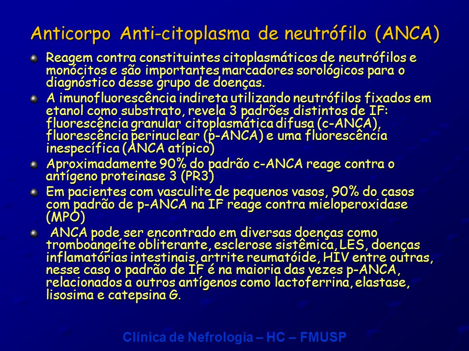 Anticorpo Anti-citoplasma de neutrófilo (ANCA)