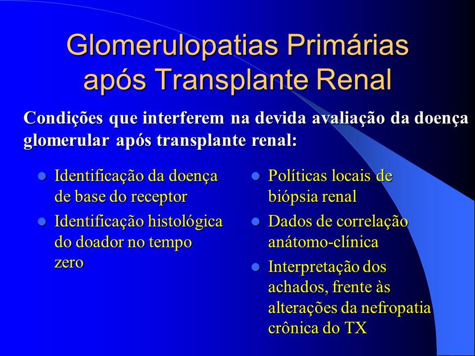 Glomerulopatias Primárias após Transplante Renal