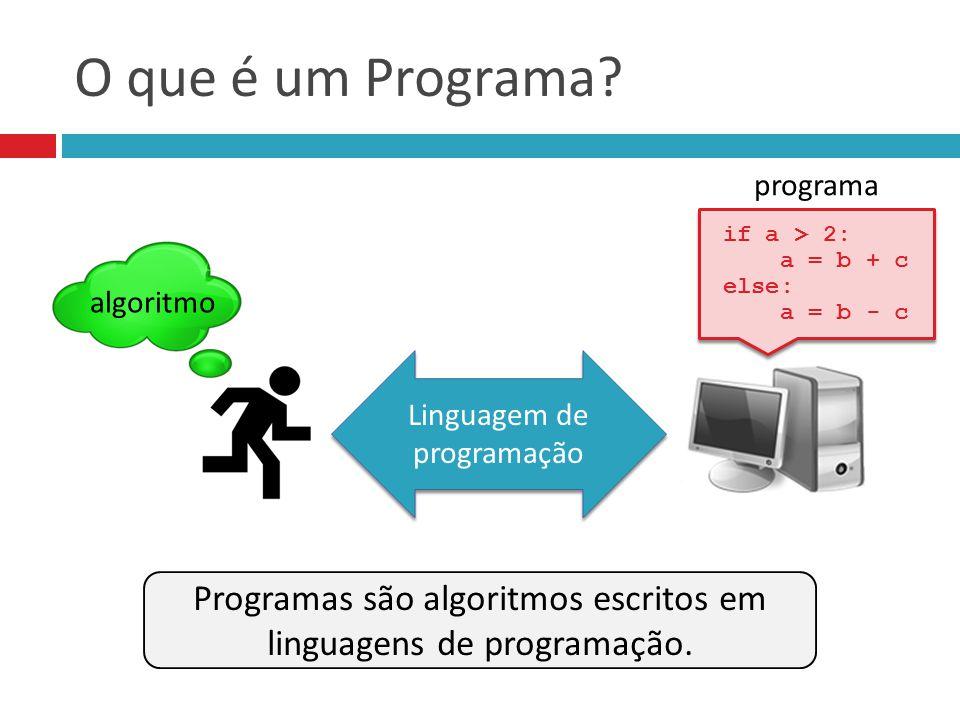 O que é um Programa Linguagem de programação. if a > 2: a = b + c. else: a = b - c. programa.