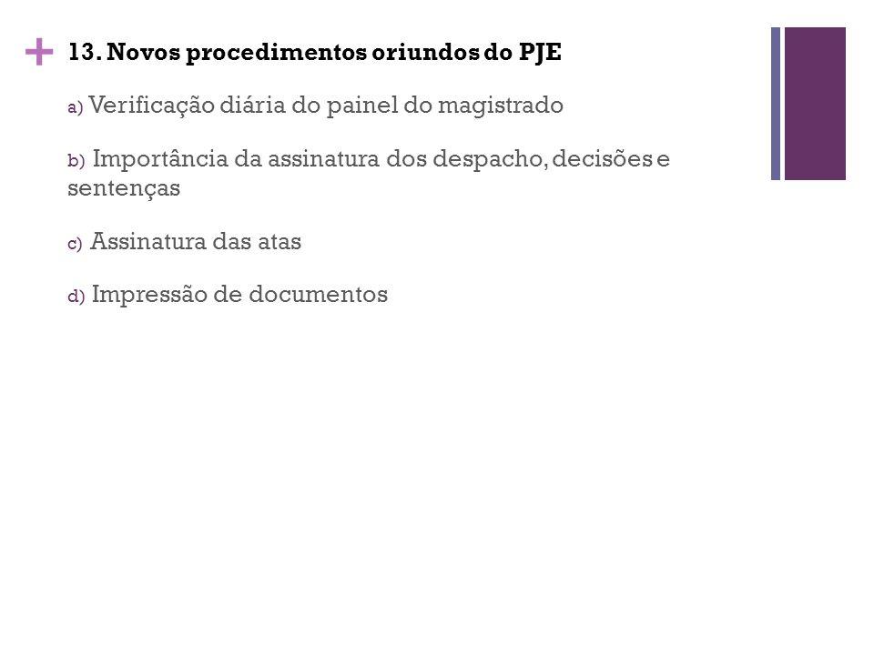 13. Novos procedimentos oriundos do PJE