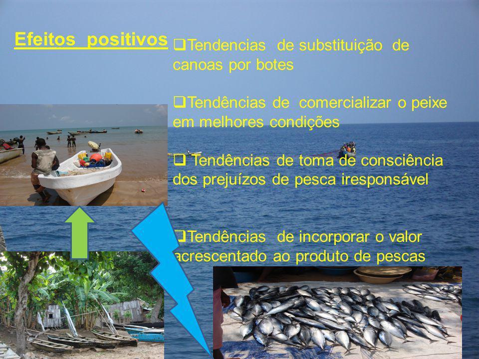 Efeitos positivos Tendencias de substituição de canoas por botes