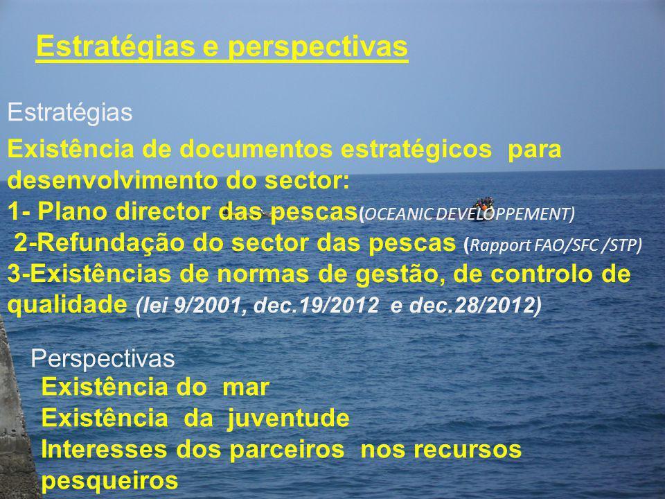Estratégias e perspectivas