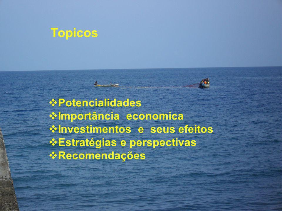 Topicos Potencialidades Importância economica