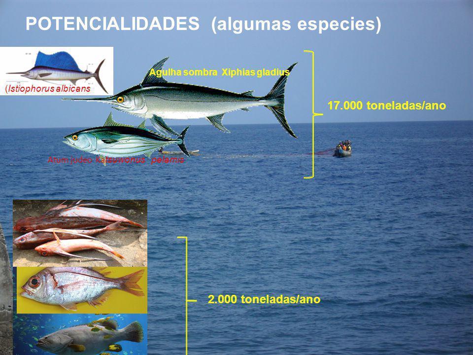 POTENCIALIDADES (algumas especies)