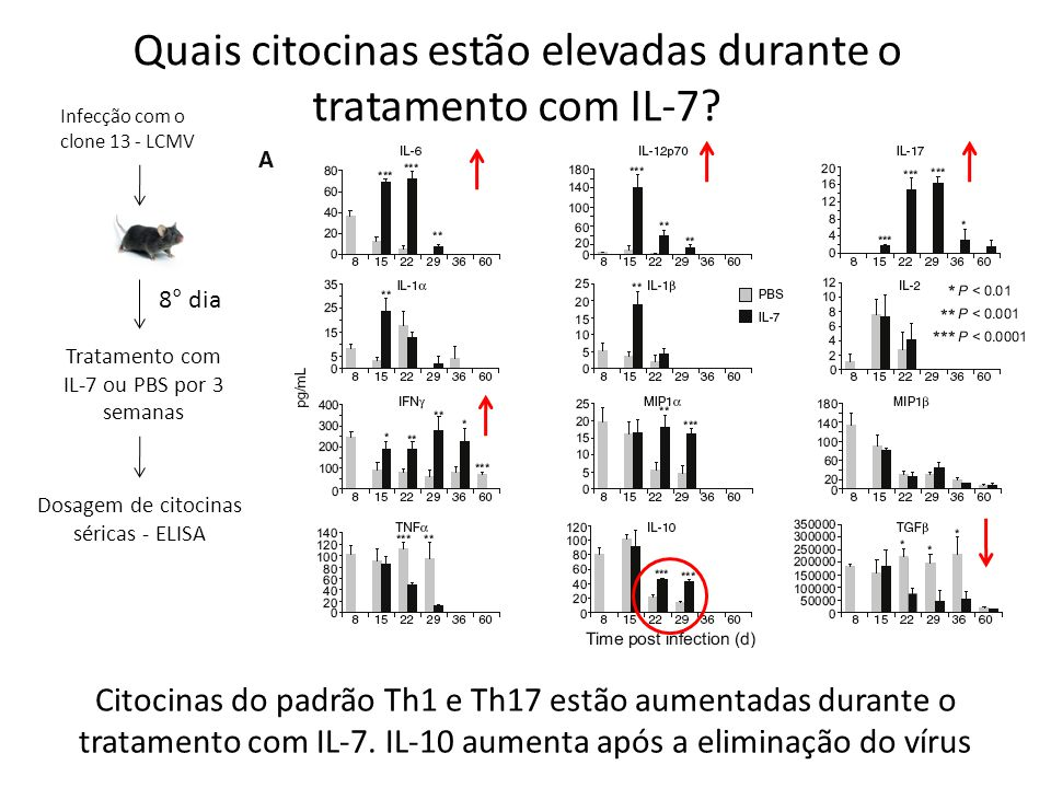 Quais citocinas estão elevadas durante o tratamento com IL-7