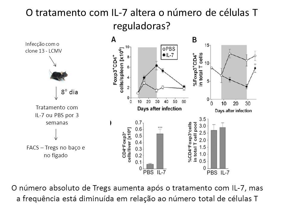 O tratamento com IL-7 altera o número de células T reguladoras