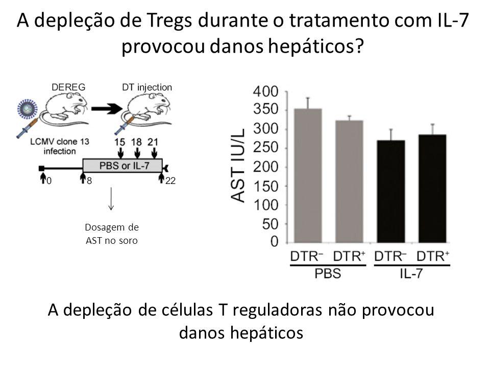 A depleção de células T reguladoras não provocou danos hepáticos